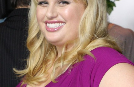 Rebel Wilson defends herself from haters on Twitter