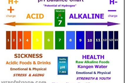 How Alkalizing Your Body Can Help Prevent Sickness, Cancer & Much More!