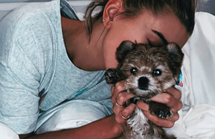Justin and Hailey Bieber adopt a new fur baby named Oscar!