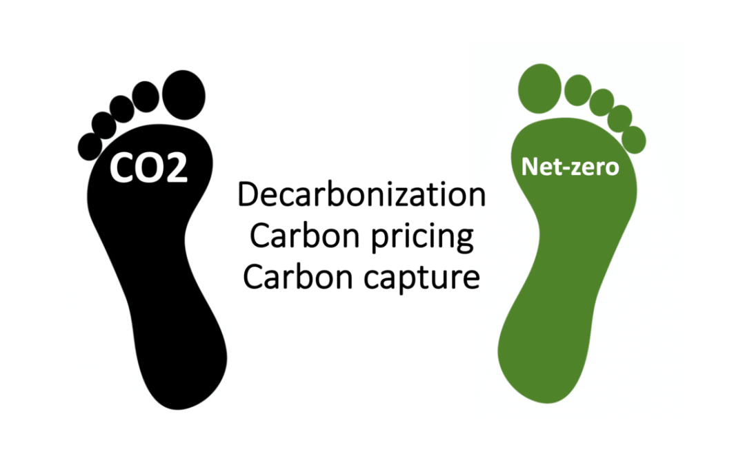 Carbon pricing for Net-zero, resulting LCOE estimates