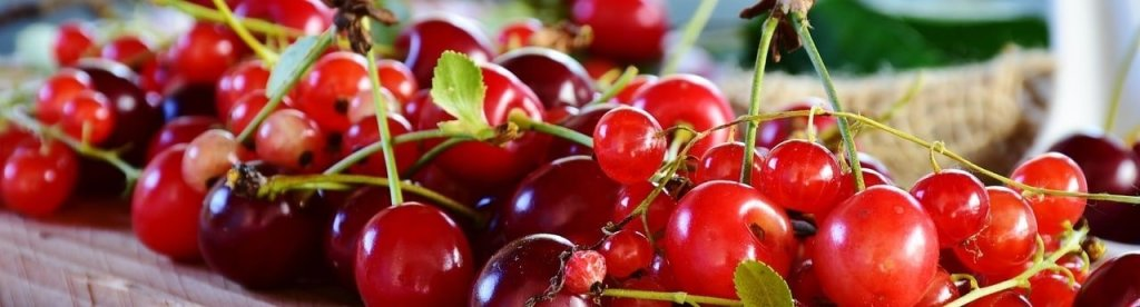 Sour fruits SIBO