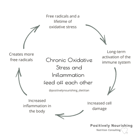graphic showing cycle of oxidation and inflammation feeding off of each other