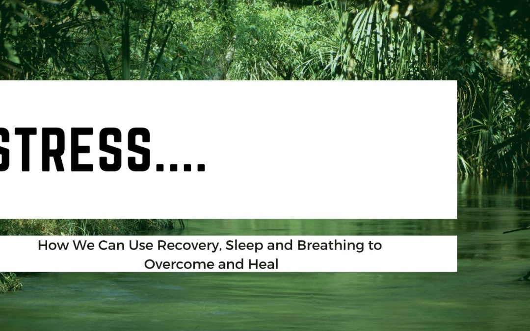Stress: How We Can Use Recovery, Sleep and Breathing to Overcome and Heal