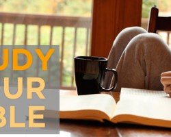 Study Your Bible (1)