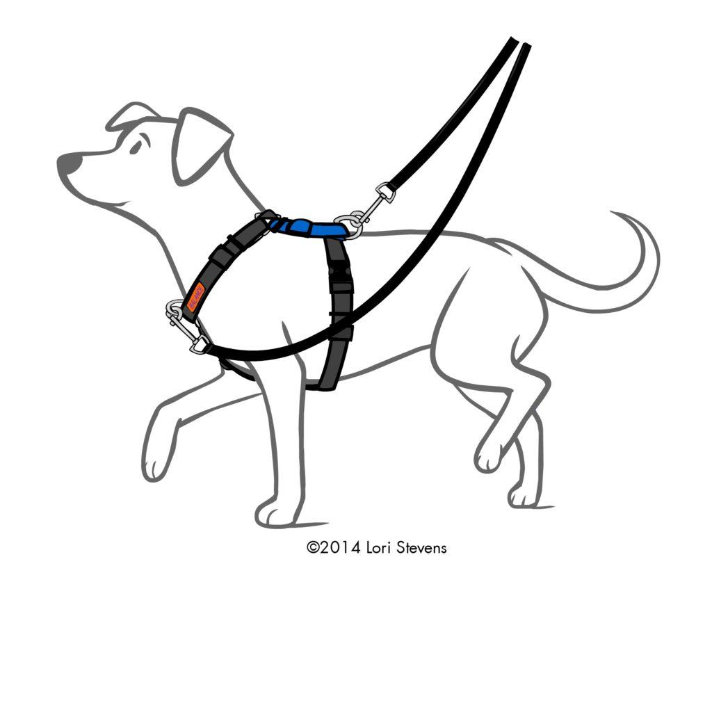 Balance Harness By Blue 9