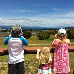 Kids over seven and under seven looking over Lake Taupo - positivespecialneedsparenting.com