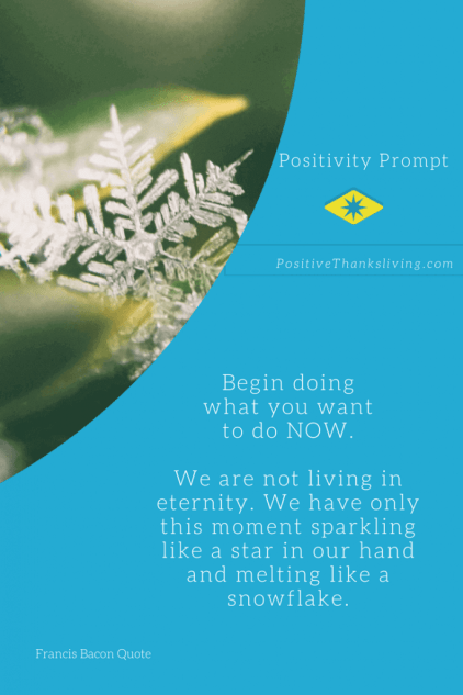 Our moments melt like a snowflake - we need to begin doing what we want to do now - from a Francis Bacon Quote
