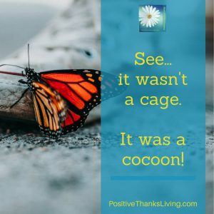 When you're feeling stuck waiting consider that perhaps it isn't a cage - it might be a cocoon