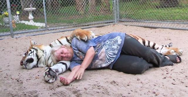 pet-tigers-janda-saber-janice-haley-10
