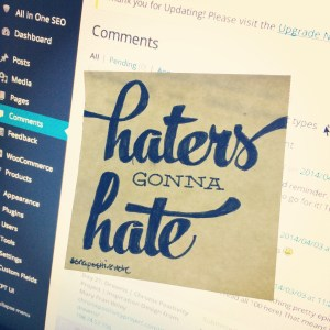 """""""Haters gonna hate"""" 