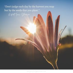 Inspirational_quotes_Dont-judge-each-day-by-the-harvest-you-reap-but-by-the-seeds-that-you-plant.-Robert-Louis-Stevenson-Quote-Art