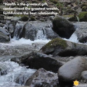 Buddha Quote: Health is the Greatest Gift digital art image