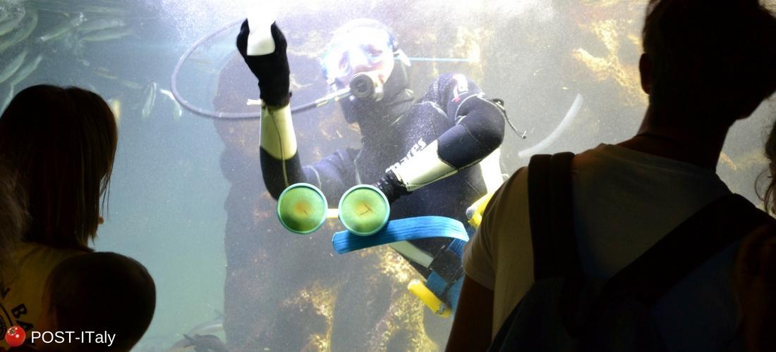 aquário de Gênova, Itália