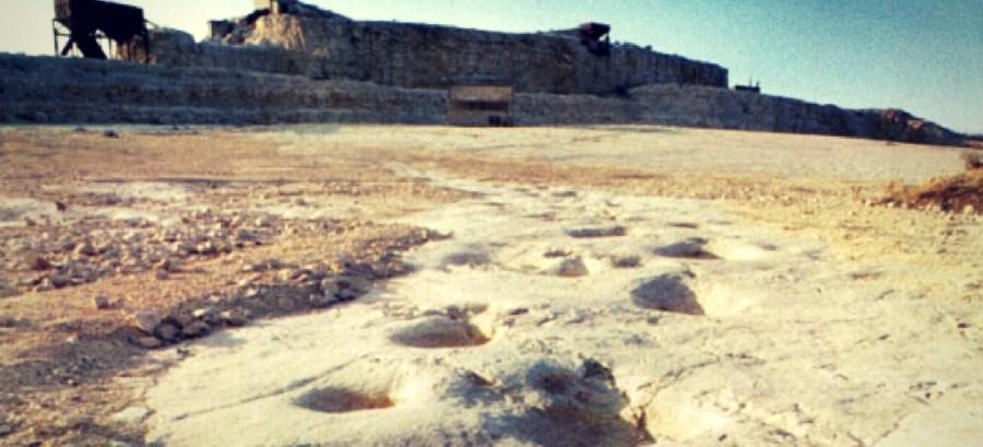 pegadas de dinossauros em Altamura