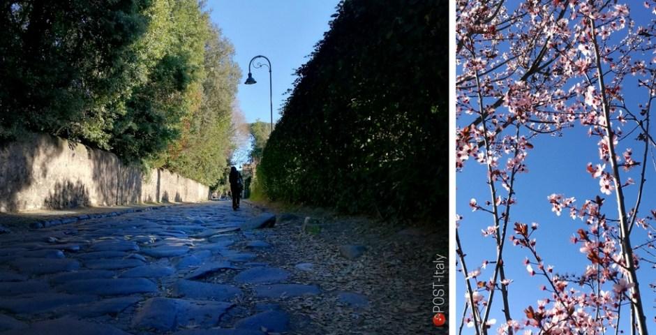 Passeio pela Via Ápia em Roma