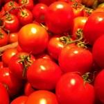 receitas italianas com tomates