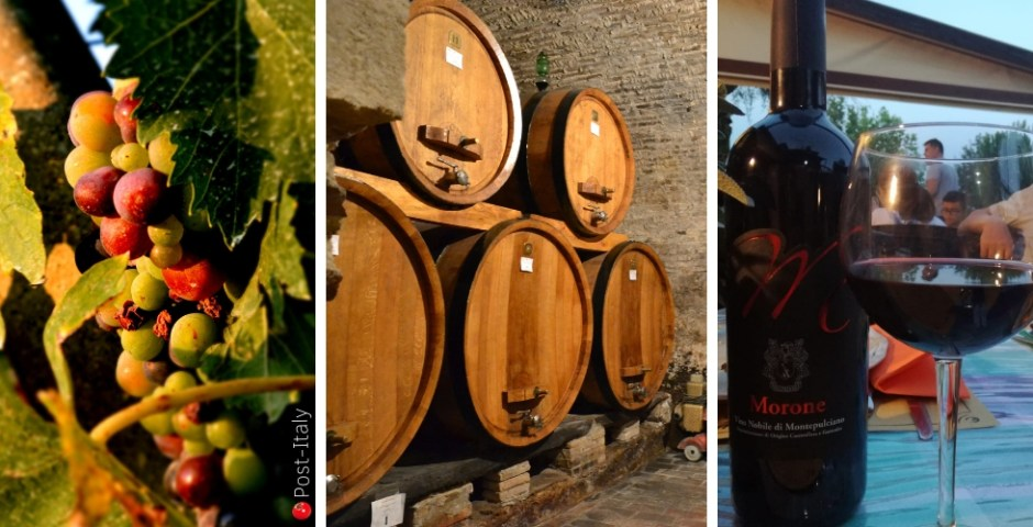 vinhos na Toscana