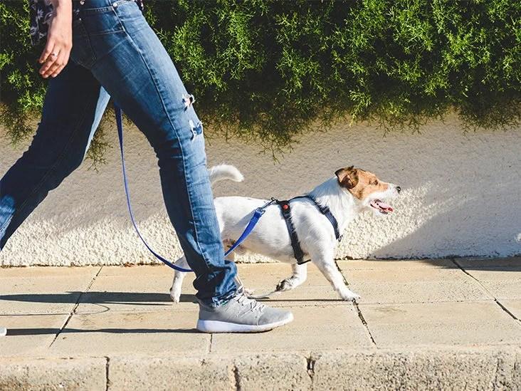 Maintain a regular schedule for walking after dinner weight loss