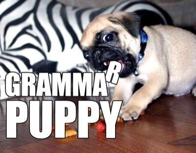 grammar puppy