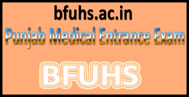 Punjab Medical Test Result 2016