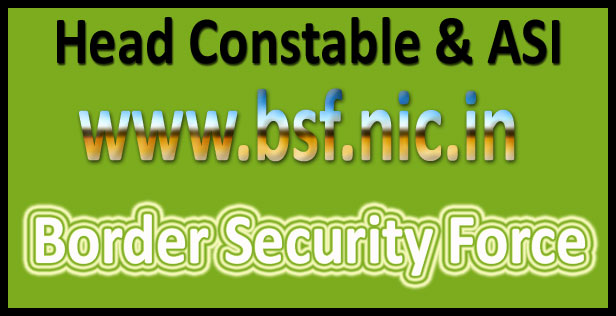 BSF head constable syllabus 2016