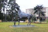 Geneva (33)