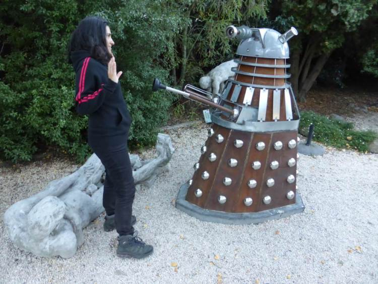 Dalek at Little River Gallery