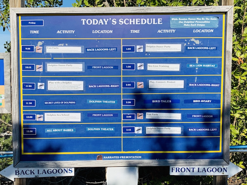 Dolphin Research Center schedule board