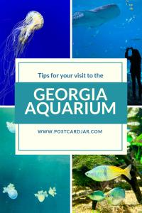tips for visiting Georgia Aquarium