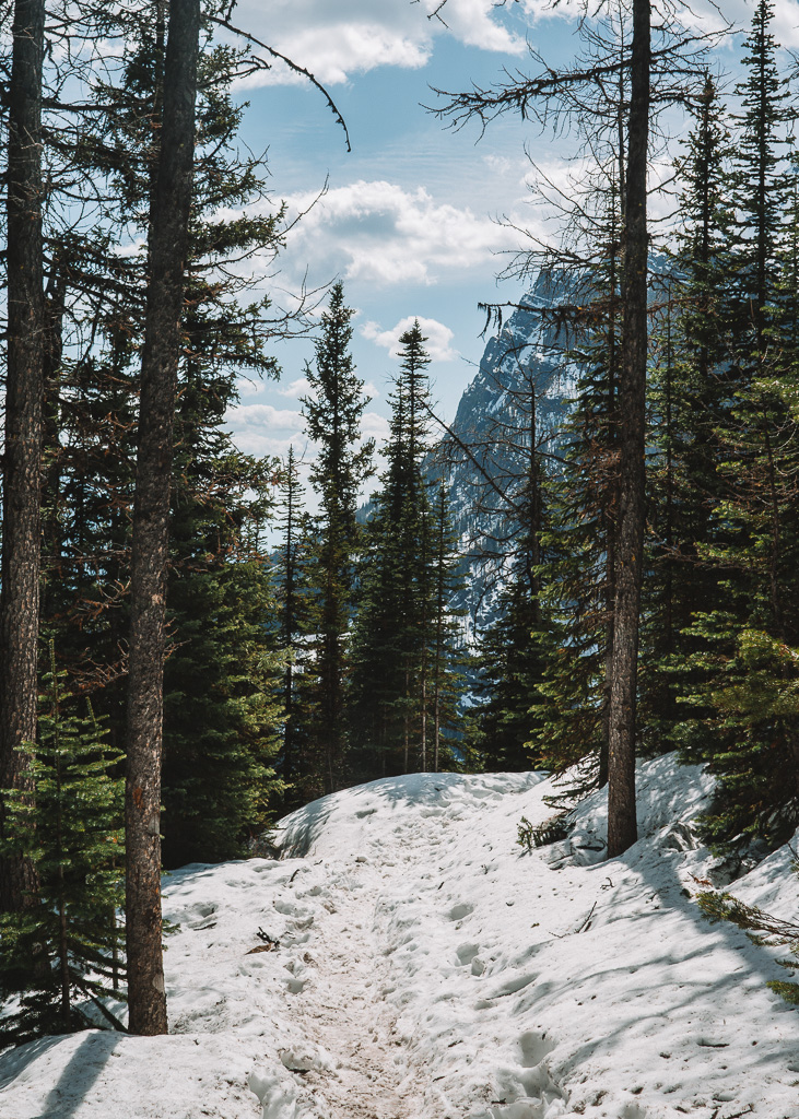 Walking to Lake Agnes, Banff National Park
