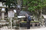 A man washing his hands and mouth at Kasuga Taisha Shrine. The deer seems to be washing his head too!