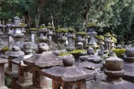 Many stone lanterns surround the entrance to the shrine,