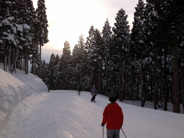 Effortlessly skiing back to the base through the woods