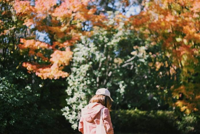 Breenhold Gardens of Mount Wilson Silvia 2
