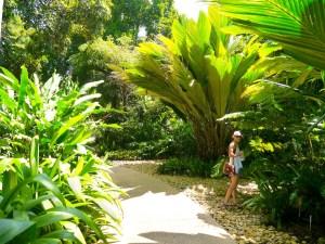 Australia, Botanic Gardens, Nature