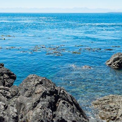 visiting san juan island ocean rocks