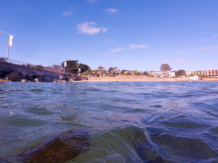 diving in monterey bay beach