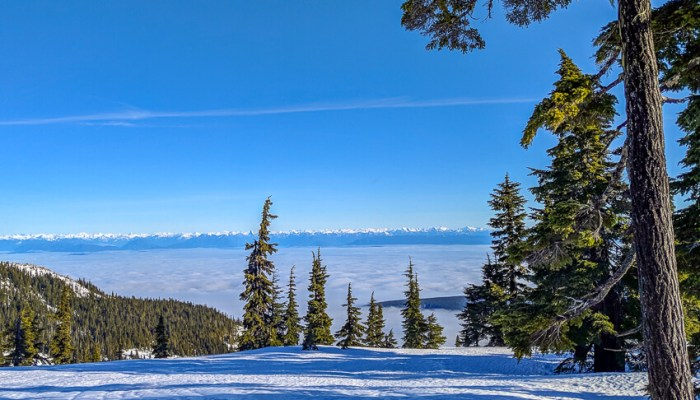 Skiing on Vancouver Island in Canada