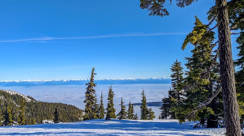 skiing on vancouver island