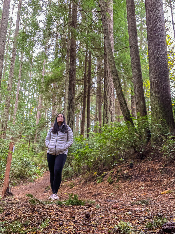 walking in grand forest