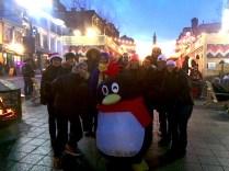 apf_penguin