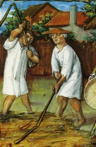 Two peasants beating grain in their under shirts. One wears a flat straw hat. 1490