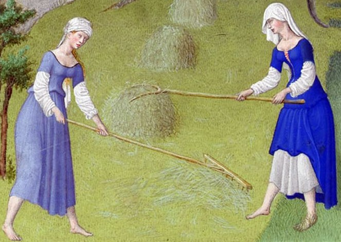Women raking hay work barefoot and wear their kirtles looped up over long-sleeved linen smocks, c. 1415
