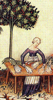 The woman is wearing a tied up veil, a cote with a wide neckline and a white apron, 1200's