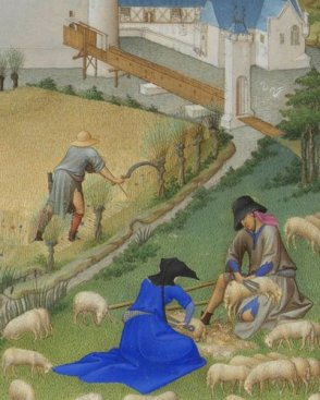 Man and woman shearing sheep. c. 1415