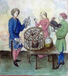 Albucasis, Tacuinum sanitatis, Allemagne (Rhénanie), XVe siècle Paris, BnF, département des Manuscrits, Latin 9333, fol. 65