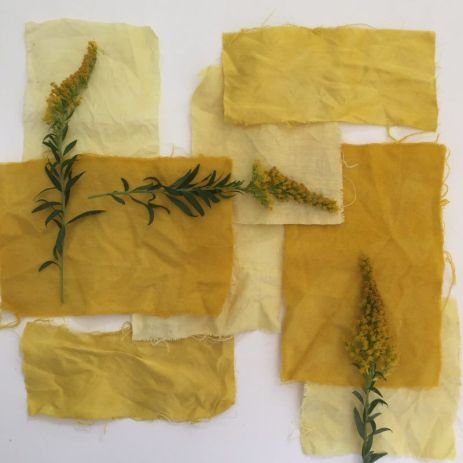 Goldenrod Dyes Natural Dye Fabric, Natural Linen