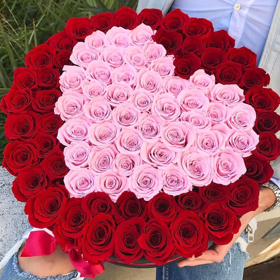 اجمل صور ورد ازهار وورود تجنن مساء الخير