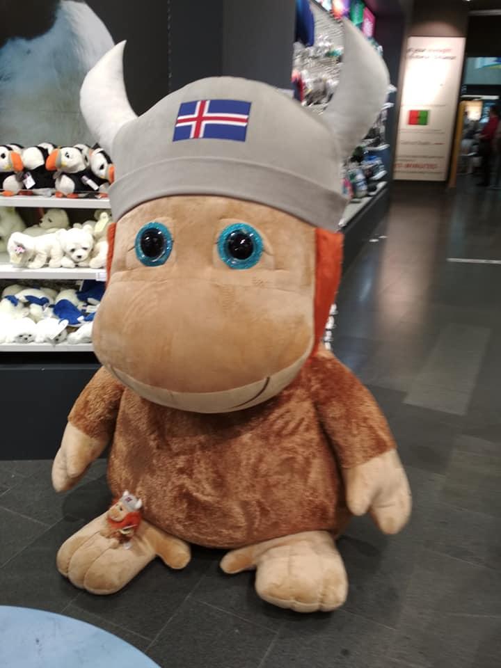 La mascotte Islandese in aereoporto