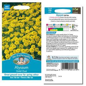 Mr. Fothergill's Seeds - Alyssum Gold Dust
